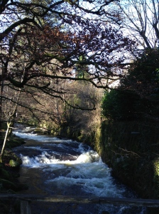 The river Alzeau is flowing quite fast